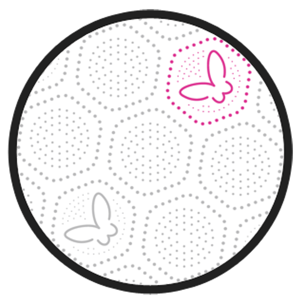 nuova Goffratura per Carta Igienica 2 e 3 veli dettaglio-carta-5-tecnologia-high-paper-produzione-carta-igienica-tissue-asciugatutto-tovaglioli-miglionico-matera-basilicata